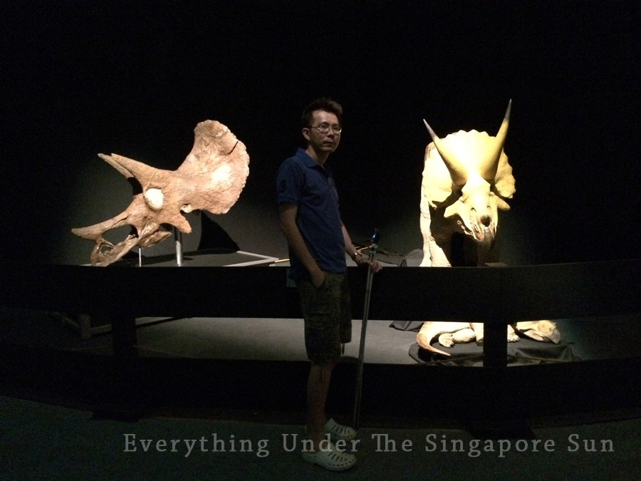 dinosaurs-science-center- (4)